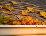 Leaves-in-the-Gutter-150